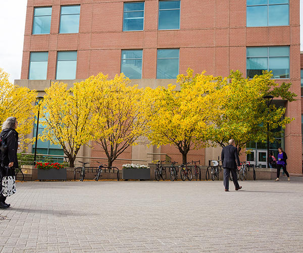 Three people walk in the courtyard outside Murray Fraser Hall on a fall day. The trees in front of the building are decked out with yellow leaves.